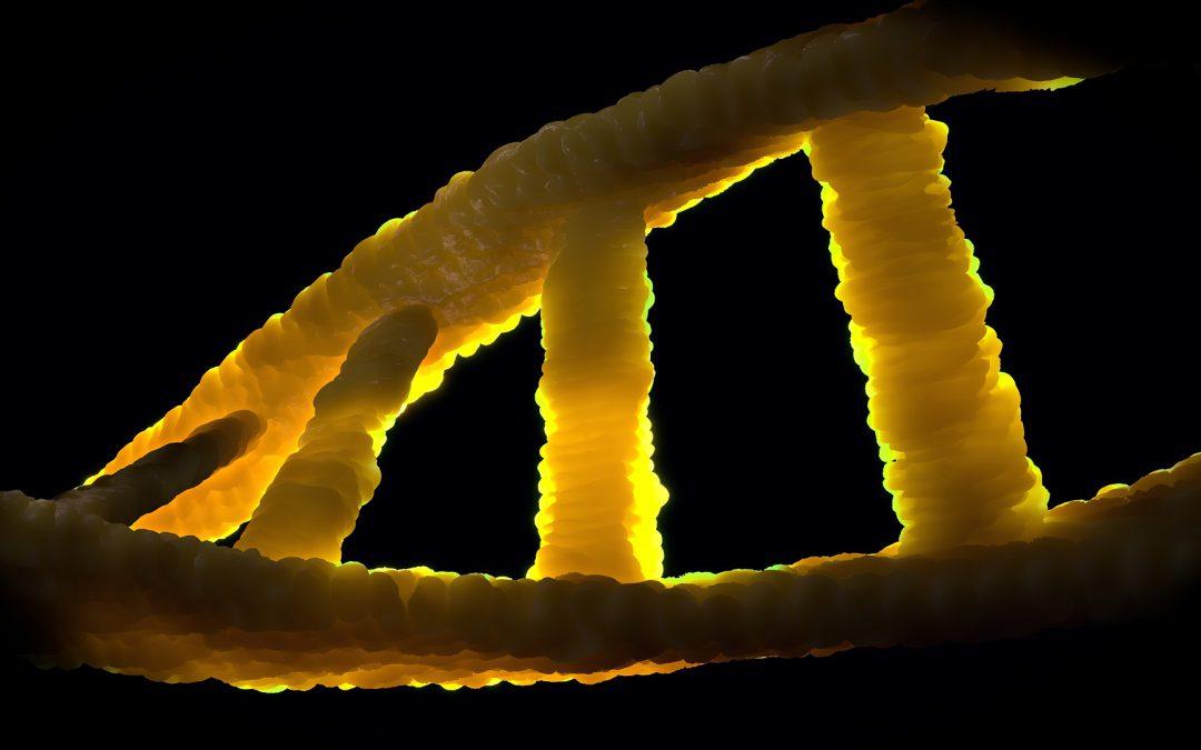 Small organisms, high citation rates